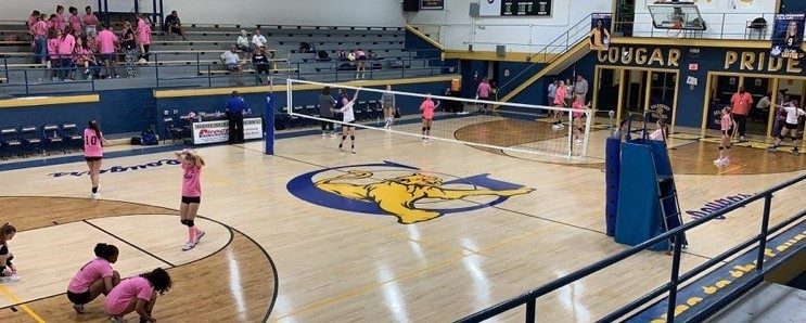 Dig Pink - GHS Volleyball
